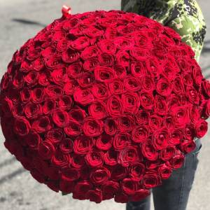 Букет 201 красная роза с упаковкой R913